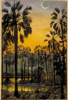 Palmyra palms in Flood-time, Java. Botanical art by Victorian adventurer & artist Marianne North. On display in North Gallery, Kew Gardens, London, England #painting