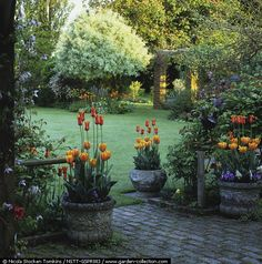 Beautiful backyard garden retreat. photo by Nicola Stocken Tomkins