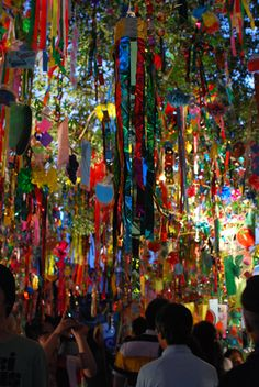 七夕は太宰府天満宮のお祭りに行ってきました♪ Star Festival, Tanabata, Banner Ideas, Traditional Japanese, Body Care, New Zealand, Decorations, Garden, Summer