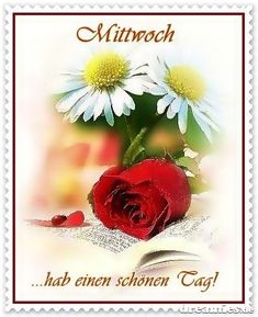 Mittwoch Good Day, Good Night, Good Morning, Wednesday Greetings, Senior Home Care, Healthy Work Snacks, Collage, Animation, Nice