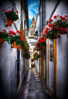 Cordoba profunda, Spain.