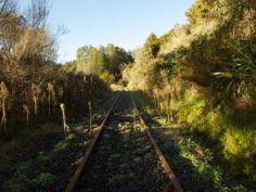 Forgotten World Adventures Adventure Tours, Railroad Tracks, Vineyard, Scenery, Boat, River, Island, Explore, World