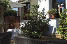 """Restaurante la Huertona en #Ribadesella. La filosofía de sus platos """"Buscando lo natural"""""""