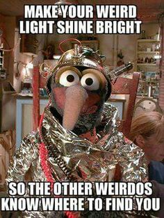LOL listen up weirdos. ——>> Weird, and I know it, and I am proud of it Elmo, The Funny, Funny Stuff, Funny Kermit Memes, Die Muppets, Fraggle Rock, The Muppet Show, Miss Piggy, Movies