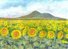 Slunečnice pod Lovošem, akvarel a pastel Jana Haasová Pastel, Tapestry, Paintings, Watercolor, Songs, Landscape, Decor, Art, Hanging Tapestry