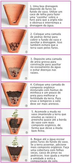 Mini horta em casa http://www.youtube.com/watch?feature=player_embedded=tAOTRt7XcE4 | Jardim | Pinterest | Ems, Minis and Gardens