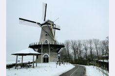 Molen De Korenbloem Kortgene, Noord-Beveland via www.fanvanzeeland.nl