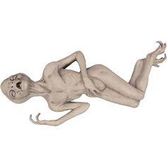 """42"""" x 20"""" x 12"""" Alien Death Foam Filled Latex Skin Halloween Prop"""