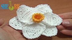 Crochet 3D Narcissus Flower Tutorial 68 Part 3 of 3 Crochet Daffodil http://sheruknitting.com/videos-about-knitting/crochet-flower-lessons/item/512-crochet-narcissus-flower.html This detailed crochet  video tutorial will help you to crochet a beautiful narcissus (daffodil) flower. The center for this flower we made in crochet flower tutorial 68 part 1. In this tutorial we continue the work crocheting two layers of petals....