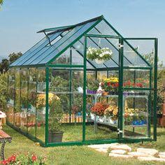 Serre de jardin polycarbonate 6m² - verte