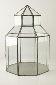Glass Gazebo Terrarium