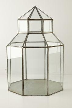Anthropologie; Glass Gazebo Terrarium