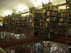 """Cornell's """"Harry Potter Library"""""""
