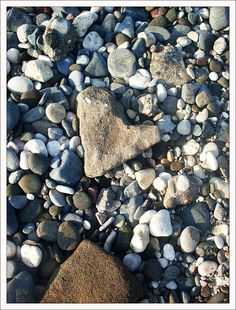 Looking for heart-shaped rocks on the beach...