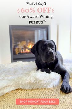 The orthopedic PupRug was designed to provide our furry friends with the ultimate place to rest while blending seamlessly into homes with its modern and luxurious design. Unlike other pet beds, the PupRug looks natural as part of your home decor Covered i Dog Training School, Dog Training Classes, Training Your Dog, Training Collar, Training Academy, Agility Training, Dog Agility, Training Tips, Cute Puppies