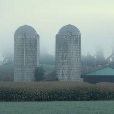 Rural skyscrapers . . . . . #RURAL #countryside #RURALMAGAZINE #rurallife #RuralLove #ItsNotWhereYouLiveItsHow #onlinemagazines #Midlifewomen #magazine #LiveUrbanLoveRural #ReadRURAL #countrytreasures #foggyworlds #silos #farmland #fields #InstaOkanagan #farming #farm #ruralareas http://ift.tt/2doM79T Visit www.ruralmag.com a free online magazine for #midlife women. It's not where you live it's how.