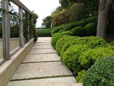 wall and base Yard Design, Trellis, Sidewalk, Base, Patio Design, Side Walkway, Walkway, Landscape Designs, Garden Planning