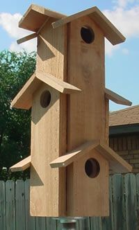 Multi story birdhouse - one home for the whole sparrow family!
