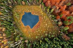Aerial photos of Polish forests