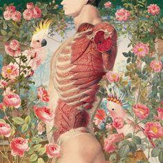 flowers/anatomy