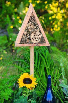 Amazing Insekten wie Bienen und Hummeln sind wichtig weil sie auf der Suche nach Nektar viele