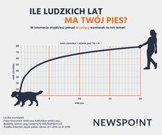 Sprawdź wiek Twojego psa zgodnie z nowym kalkulatorem amerykańskich naukowców. Line Chart, Student