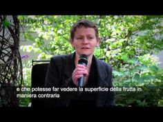 Mischer'traxler // Interview - YouTube