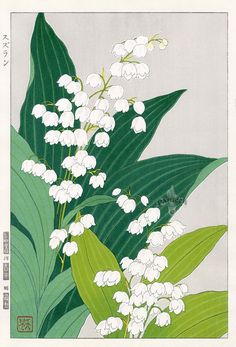 Lily of theValley by Teru Kuzuhara from Shodo Kawarazaki Spring Flower Japanese Woodblock Prints