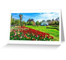 Painted Tulips by the Bendigo Conservatory Greeting Card