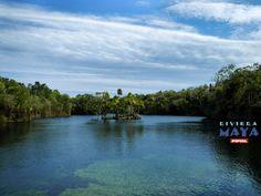 Campamentos de verano en Riviera Maya.
