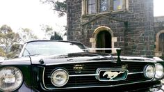Mustangs in Black 1966 GT Convertible Ford Mustang out for Steven and Saide's wedding at Montsalvat in Melbourne.
