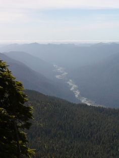 View into Queets River Valley from the Olympic Mountains -- hiking this trail was one of the hardest things I ever did, but it was oh so worth it.