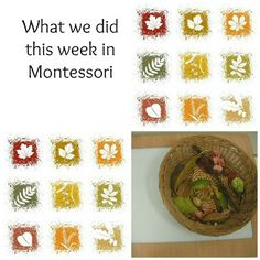 Montessori classroom activities  Pin now, check out later