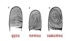 Что рассказывают о вас отпечатки пальцев (тест) — Болтай