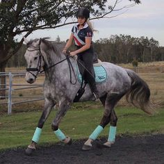 Not sure what colour will suit your horse? With so many colours and combinations to choose from, finding the perfect tack set can be quite a challenge. Horse Gear, My Horse, Horse Riding, Horse Tips, Equestrian Boots, Equestrian Outfits, Equestrian Fashion, Equestrian Style, Equestrian Problems