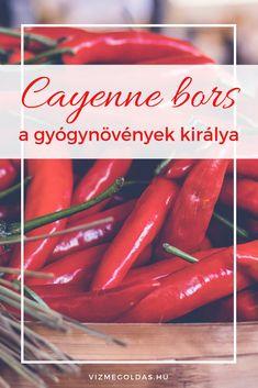 Cayenne bors – a gyógynövények királya Hot Dogs, Sausage, Herbs, Health, Ethnic Recipes, Medical, Food, Hungary, Health Care