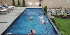 Modpools manufactures made in Canada modular, relocatable shipping container swimming pool and hot tub spas. Order your modern container pool today. Small Backyard Pools, Swimming Pools Backyard, Garden Pool, Swimming Holes, Shipping Container Swimming Pool, Shipping Container Homes, Shipping Containers, Pool Companies, Cool Pools