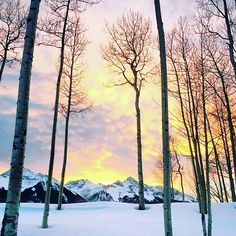Gorgeous Girl Destination ⛄❄ #gorgeousgirlsonthego #winterwonderland #snow #skiing #snowboarding #mountainlife #babyitscoldoutside #freshpowder #deervalley #love #traveltuesday #instatravel