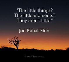 Image result for little things quote jon kabat zinn