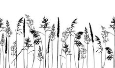Image Details IST_21873_00593 - Seamless horisontal border with wild herbs and flowers silhouettes isolated on white background. Endless Meadow grass composition. Summer concept. Vector illustration.. Seamless horisontal border with wild herbs and flowers silhouettes isolated on white. Royalty Free Images, Royalty Free Stock Photos, Grass Vector, Vector Free, Landscape, Illustration, Artist, Flowers, Silhouettes