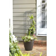 Shop 12-in W x 48-in H Powder-Coated Stained Glass Garden Trellis at Lowes.com