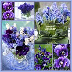 ~Fleur•Collages~