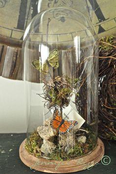 Jennifer Rizzo: Make a faux terrarium out of a thrift store clock case....