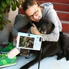 10 Tips for Getting Great Photos of Your Dog
