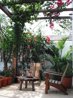 Casa  Vela en venta $$ Tulum, Riviera Maya, Patio, Outdoor Decor, Plants, Paradise, Home Decor, Home, Weather Vanes