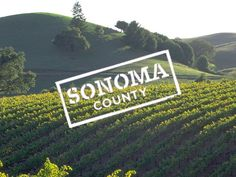 Sonoma County venues - and there's a form to fill out to help find one that fits your needs! :)