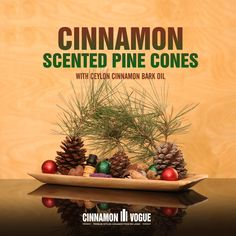 Scent your pine cones for a fabulous aroma and to get rid of any lurking insects