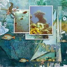 CORAL REEF: Just loved snorkeling in the Red Sea in Israel  I made this page with Artful Marks Sea from Jen Maddocks, available at Digital Scrapbooking Studio here: https://www.digitalscrapbookingstudio.com/jen-maddocks-designs/ Also used: Artisan Favorite Templates no.11 and Aquatic by Jen Maddocks at DSS