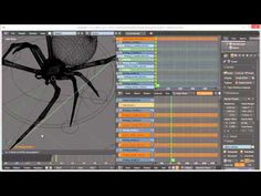 How To Create A Spider Walk Cycle in Blender