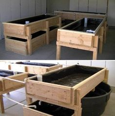 Aquaponic Kits For Self Sufficient Living